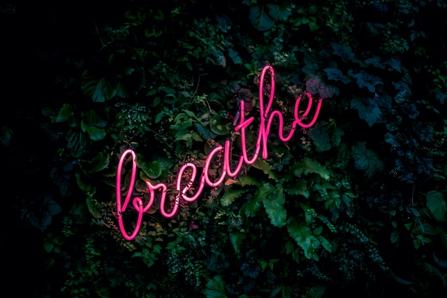 healthy lungs help you breathe easy